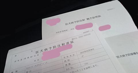 予防接種の証明書と猶予証明書
